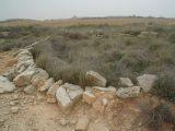 Prospección arqueológica Huesca -Monegros II- ARQUEOPLUS ©